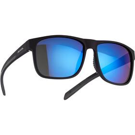 Alpina Nacan III HM Glasses, zwart